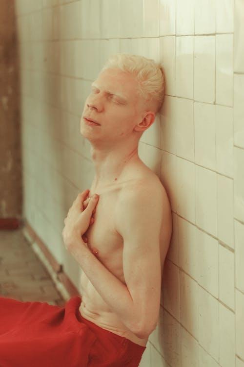 Photos gratuites de à l'intérieur, albinos, assis, baignoire