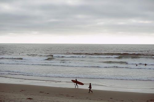 Foto stok gratis laut dalam, pantai