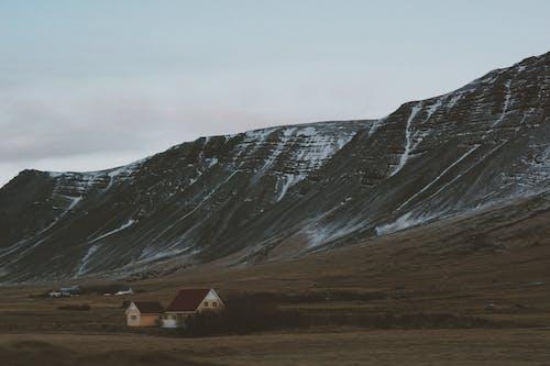 コールド, フィールド, 冒険, 夜明けの無料の写真素材