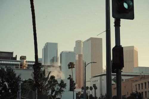 低角度拍攝, 光, 商業, 城市 的 免費圖庫相片