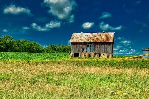 Základová fotografie zdarma na téma architektura, budova, chýše, dřevo