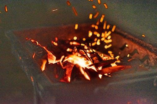 Gratis arkivbilde med bål, camping, førstegangs tjeneste, grill