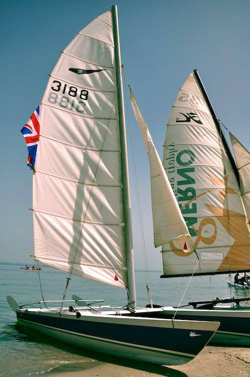 Fotos de stock gratuitas de barco de vela, barcos de vela, deporte acuático, Deportes