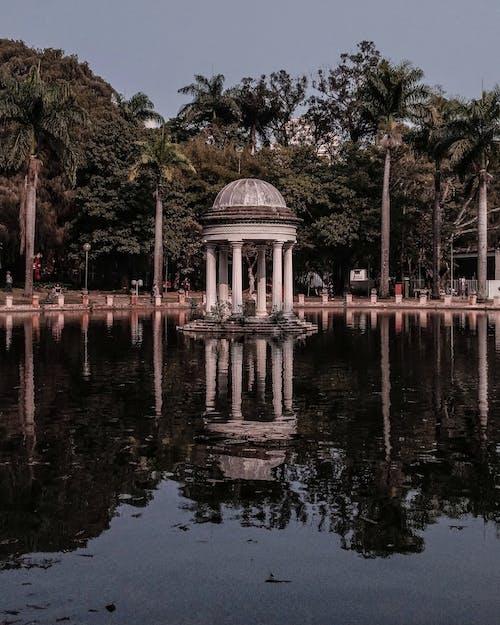 公園, 列, 反射, 戶外 的 免费素材照片