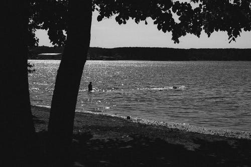 Free stock photo of nature, sea, summer