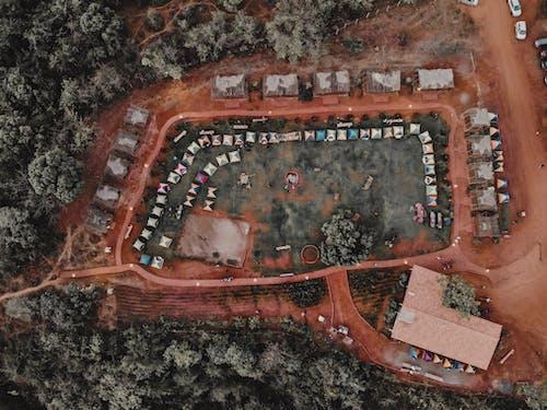 Бесплатное стоковое фото с Аэрофотосъемка, вид сверху, деревья, на открытом воздухе