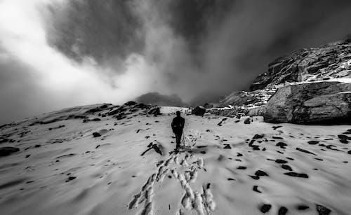 人, 健行, 冬季, 冷 的 免费素材照片
