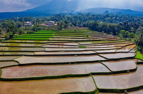 Základová fotografie zdarma na téma cestování, dron, dron skamerou, farma