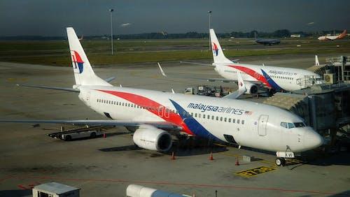 Fotobanka sbezplatnými fotkami na tému letecké spoločnosti v malajzii, letisko