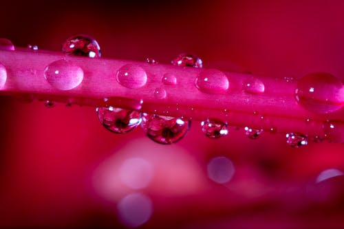 Gratis stockfoto met blurry achtergrond, bubbels, close-up, concentratie