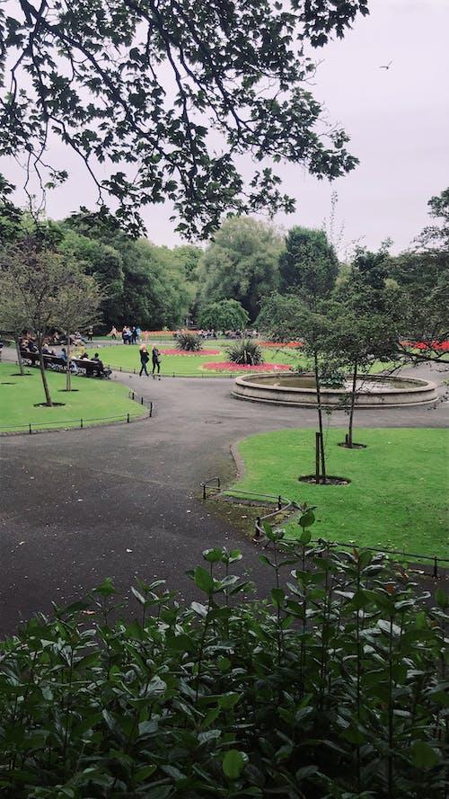 Imagine de stoc gratuită din parc de distracții