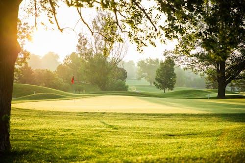 Free stock photo of golf course, green, sunrise