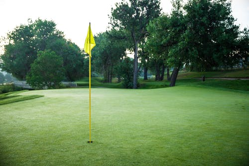 Free stock photo of golf course, green