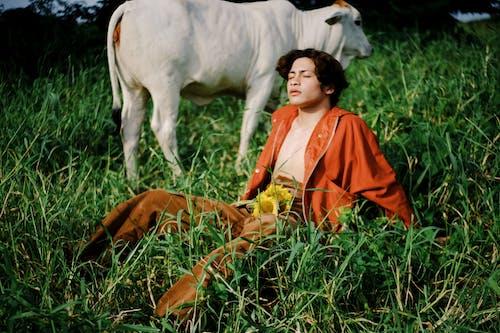 Foto profissional grátis de agricultura, animal, ao ar livre, área