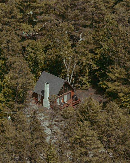 Fotos de stock gratuitas de arboles, cabina, casa, foto con dron