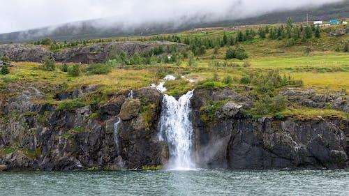 Imagine de stoc gratuită din apă, cascadă, curent, fotografie cu natură