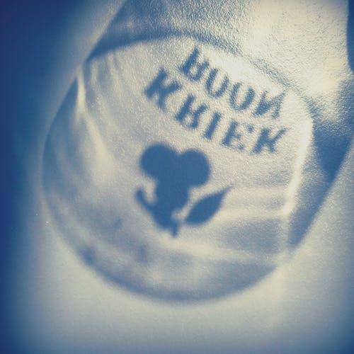 Free stock photo of beer, kriek