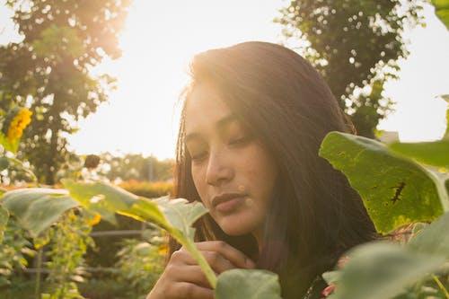 altın rengi Güneş, Asyalı, asyalı kız içeren Ücretsiz stok fotoğraf