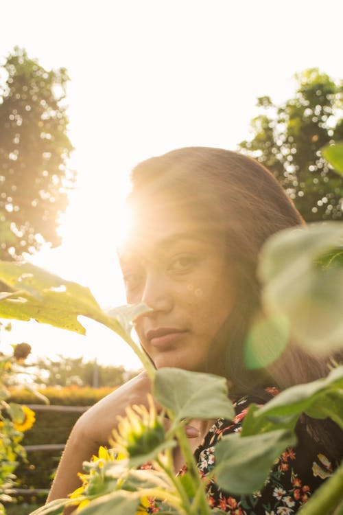 altın rengi Güneş, Asyalı, asyalı kız, ayçiçeği içeren Ücretsiz stok fotoğraf