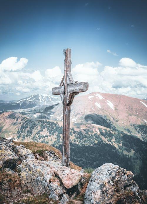 冬季, 冷, 十字架, 增長 的 免費圖庫相片