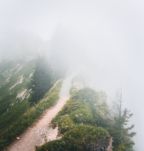 Pathway on Mountain Surrounded by Fogs