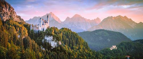 城堡, 增長, 天性, 山 的 免费素材照片