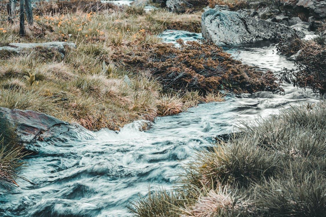 Stream Near Green Grass Fields