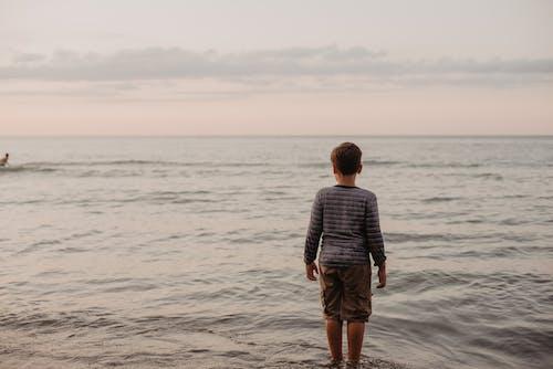 日落, 水, 海灘 的 免费素材图片