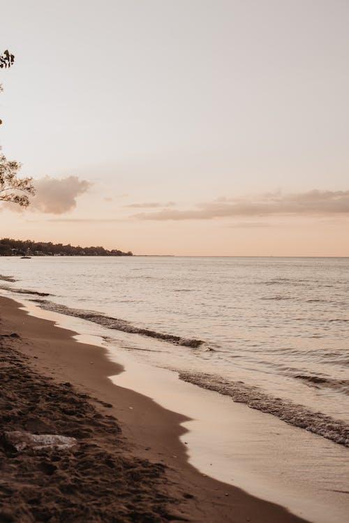 Free stock photo of beach, sunset, water