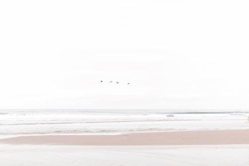 Kostenloses Stock Foto zu horizont, meer, meeresküste, ozean