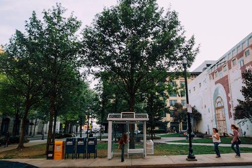Foto profissional grátis de alvorecer, ao ar livre, arquitetura, árvores
