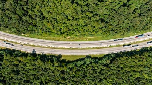 açık hava, ağaçlar, asfalt yok, bakış açısı içeren Ücretsiz stok fotoğraf