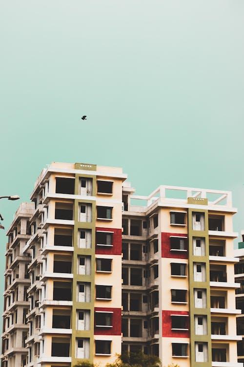 가장 높은, 건물, 건축, 건축 설계의 무료 스톡 사진