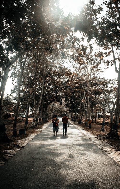 Grayscale Photography of Two Person Walking