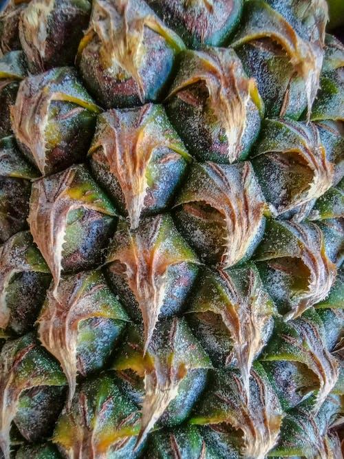 Free stock photo of fruit, green, micro, pineapple