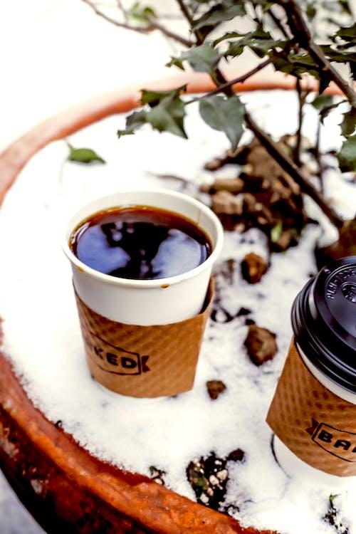 맛있는, 술을 마시다, 음료, 카페인의 무료 스톡 사진