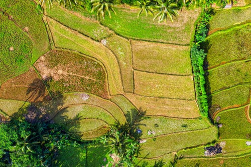 Free stock photo of aerial, agriculture, color, desktop