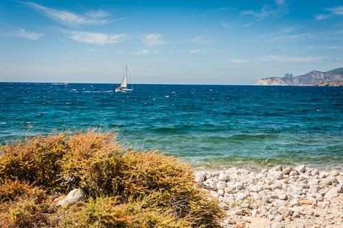 Foto d'estoc gratuïta de barca, embarcació d'aigua, mar, navegant