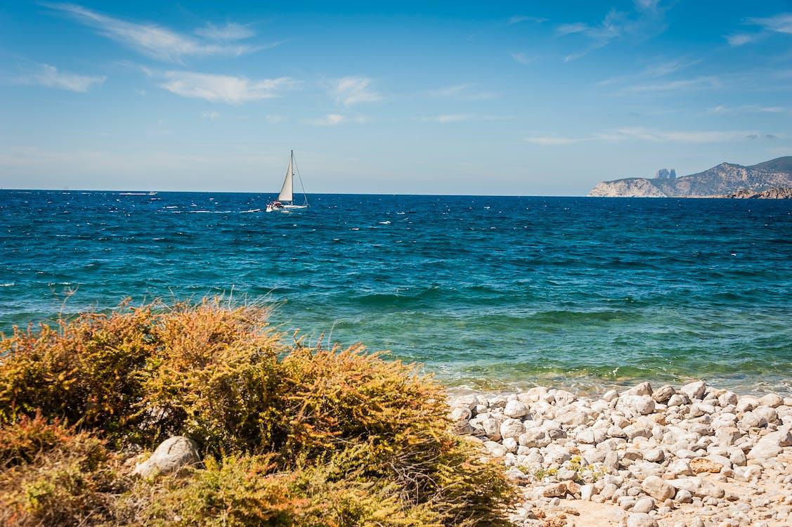barca, costa, embarcación