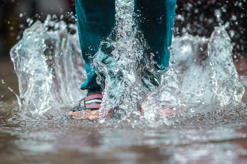 呎, 水, 水坑, 潑灑 的 免费素材照片