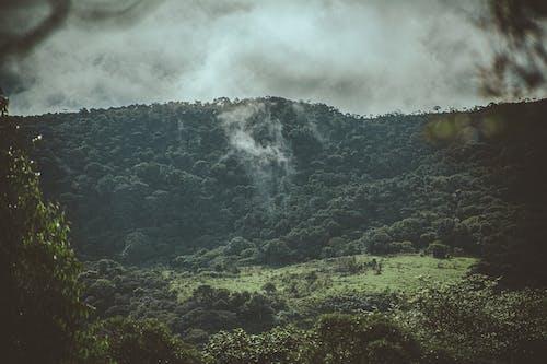 Безкоштовне стокове фото на тему «високий, гора, Денне світло, денний час»