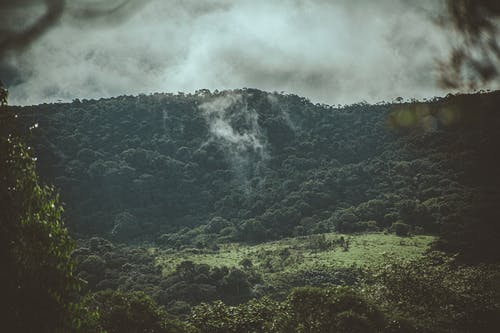 屋外, 山, 成長, 昼間の無料の写真素材