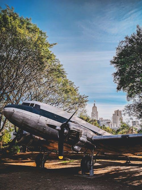 Fotos de stock gratuitas de aeronave, al aire libre, alas, alas de aviones