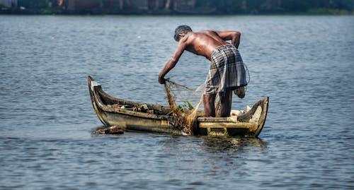 Ingyenes stockfotó fa, halászhajó, halászhálók, holtágak témában