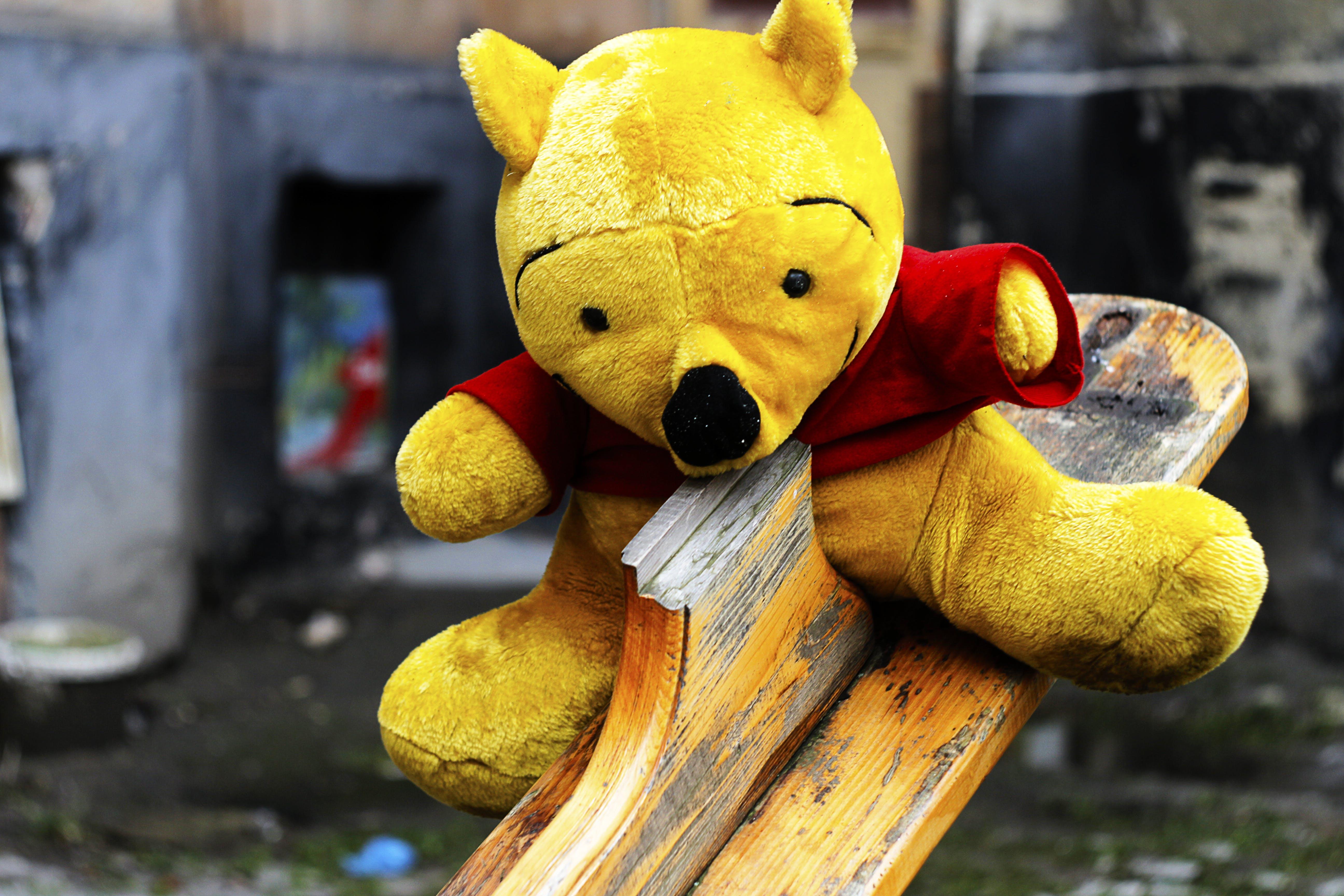 bulanıklık, çocukluk, dinlenme, doldurulmuş oyuncak içeren Ücretsiz stok fotoğraf