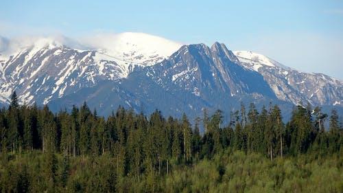 Безкоштовне стокове фото на тему «високий, висота, гірський хребет, гірські вершини»