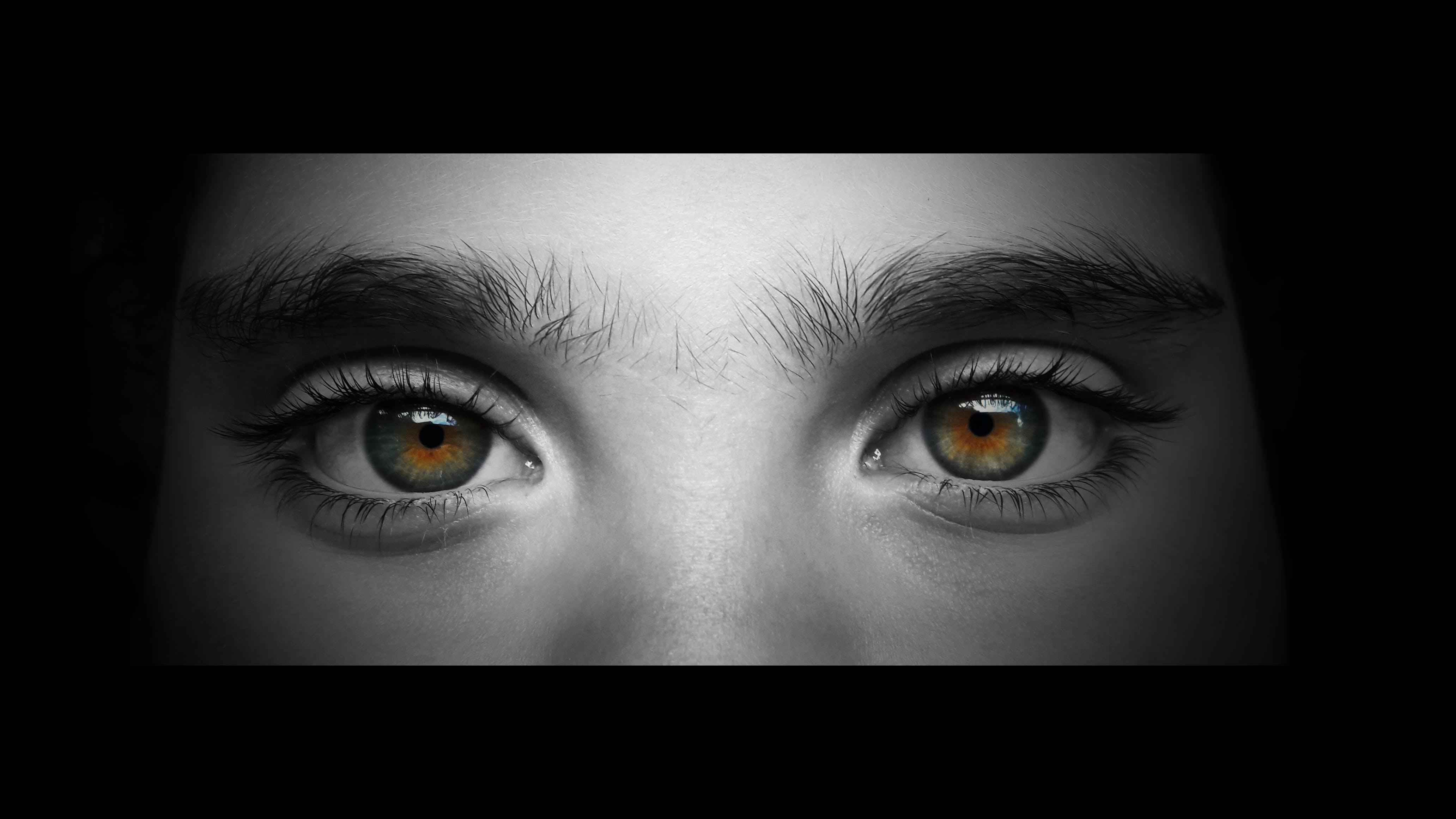Free stock photo of eyes, face