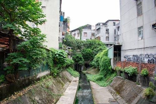 Fotos de stock gratuitas de Taipei, Taiwán