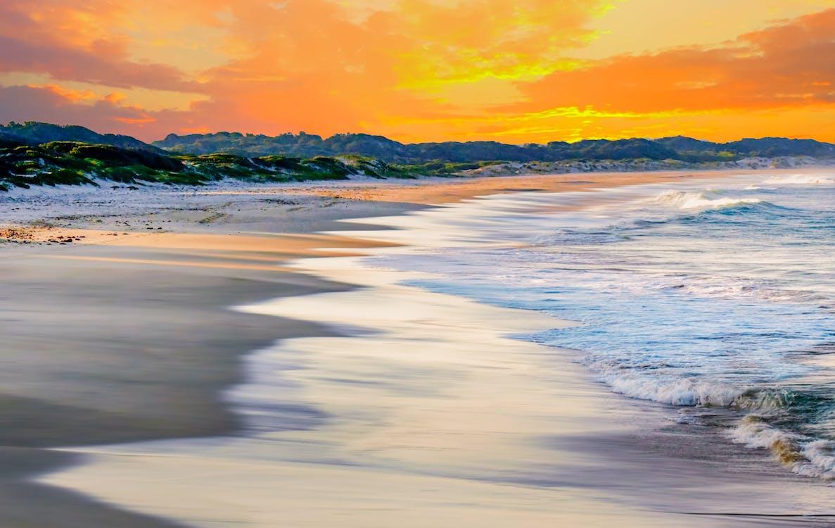 Closeup Photo of Seashore during Golden Hour