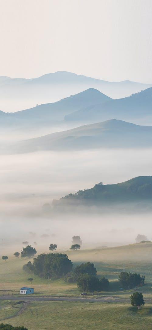 Gratis stockfoto met grasland, landschapsfotografie, mistige ochtend